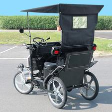 Mit der elektrischen Trethilfe (250-W-Motor) fahren Sie kräftesparend – auch auf hügeligem Gelände.