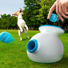 Ballwurfmaschine iFetch - Für drinnen und draußen: trainiert und bespielt Ihren Hund nimmermüde. Und gibt Ihnen erholsam frei.