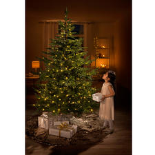 """Dauer-Tannenbaum """"Chalet"""" - Der naturgetreue Tannenbaum mit fertigem LED-Lichterschmuck. Üppig grün, mit dichtem Bewuchs – und jedes Jahr wieder schön."""