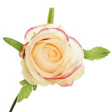 Sogar aus der Nähe wirken die Blütenköpfe so echt, dass man an ihnen schnuppern möchte.