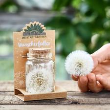 Wunscherfüller (Pusteblume im Glas) - Einst bezauberndes Kinderspiel. Heute ein herzerfrischendes, originelles Präsent.