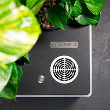 Ein Ventilator saugt die Raumluft an und führt sie zum Reinigen und Befeuchten über ein Wasserbad zu den Pflanzenwurzeln.
