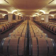 Barriquekeller des Weingutes San Leonardo