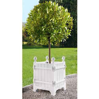 """Tree-Box """"Château de Versailles"""" In den Parkanlagen von Versailles – und jetzt bei Ihnen: die noble Residenz für Ihre kostbaren Pflanzen."""