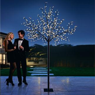 LED Kugellichter-Baum 500 sanft strahlende Lichtkugeln schaffen eine zauberhafte Atmosphäre. Drinnen und draußen.