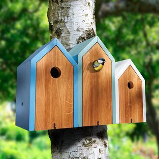 Nistkasten Reihenhaus Eine fröhliche Nachbarschaft besiedelt jetzt Ihren Garten. Schön wohnlich und dekorativ.