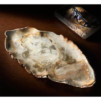 Servierschale aus fossilem Holz Kostbares Unikat: die Servierschale aus 20 Mio. Jahre altem versteinerten Holz.