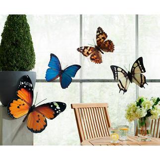 Fotodruck-Schmetterlinge, 4er-Set XL-Schmetterlinge umschwärmen dekorativ Ihre Terrasse, Hauswand, Fenster, ...