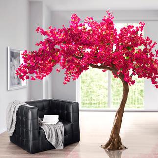 Kunstbaum Bougainvillea Eine prachtvolle Bougainvillea: Ihr Dauerblüher für Drinnen und Draußen. Mit rund 5.500 täuschend echten, pinkfarbenen Blüten.