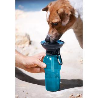 AutoDogMug™ Hundetrinkflasche Überall: frisches, sauberes Wasser für Ihren Hund.