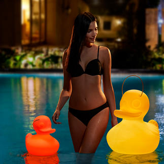 The Duck Duck Lamp™ Leuchtet akkubetrieben in faszinierendem Lichtspiel. Ein Blickfang in Wohnraum, Praxis, Büro – genauso im Garten, zu jeder Jahreszeit.