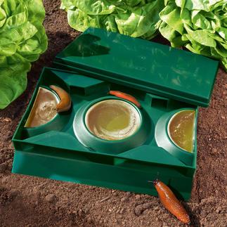 Bier-Schneckenfalle Slug X, 2er-Set Kein Gift, keine Chemikalien gefährdet Ihre Haustiere und willkommene Gartenbewohner.