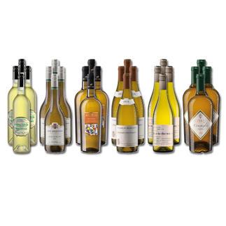 Weinsammlung - Die kleine Weißwein-Sammlung Frühjahr/Sommer 2020, 24 Flaschen Wenn Sie einen kleinen, gut gewählten Weinvorrat anlegen möchten, ist dies jetzt besonders leicht.
