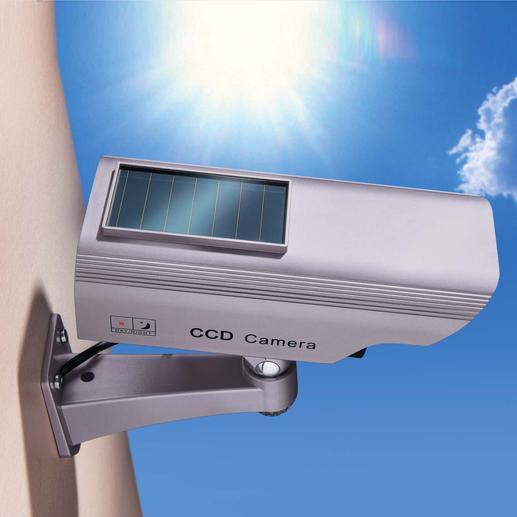 """Über die Solarzelle tankt Ihre """"Kamera"""" Energie für die ganze Nacht – selbst im Winter."""