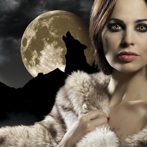 """Die trendigen Wohnaccessoires in naturgetreuem """"Wolfspelz"""" sind ein Blickfang in Ihrem edlen Ambiente."""
