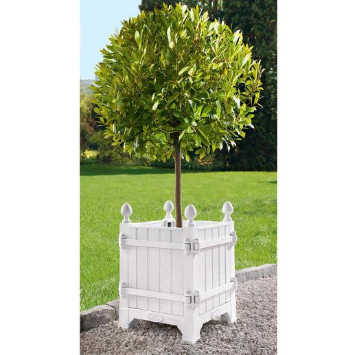 """Tree-Box """"Château de Versailles"""" - In den Parkanlagen von Versailles – und jetzt bei Ihnen: die noble Residenz für Ihre kostbaren Pflanzen."""