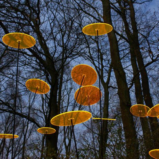Besonders intensiv tritt das Leuchten in der Dämmerung (und bei bewölktem Wetter) hervor. (Foto: Sabine Berger)