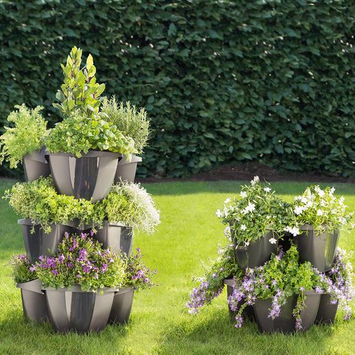 Etagen-Pflanzturm - Opulente Blumenpracht auf kleinem Raum. Prächtiger Pflanzturm. Oder einzelnes Pflanzrondell.