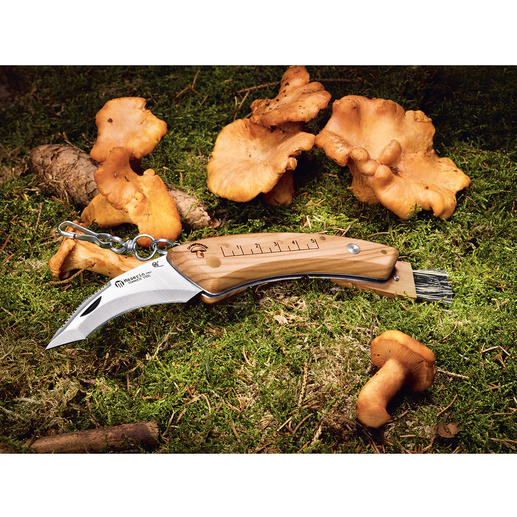 Maserin Pilzmesser - Aus der Traditionsmanufaktur Maserin, Italien. Mit klappbarer 8-cm-Klinge und patentiertem klappbarem Pinsel.