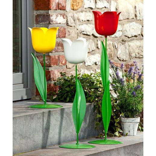XL-Tulpe Vielseitige Garten- und Wohnraumdekoration aus Metall. Imposante Größe. Extragroßer Blütenkelch.