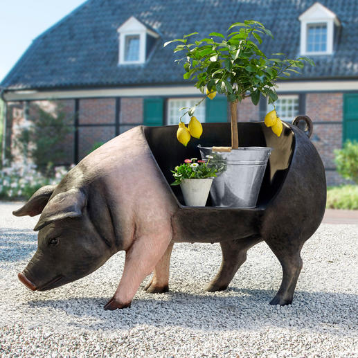 Auch outdoor-geeignet, z. B. als Sitz- oder Blumenbank, als origineller Kräutergarten oder für dekorative Saison-Arrangements.