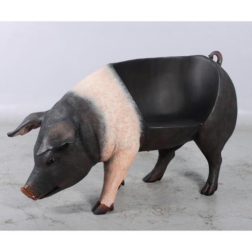 Charakteristische Merkmale wie der roséfarbene Säumungsstreifen outen das Sitz-Schwein als Verwandten des schwäbisch-hällischen Landschweins.