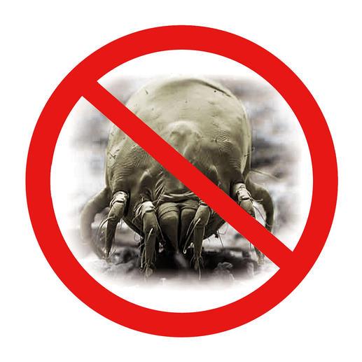 In unserem feuchten, gemäßigten Klima fühlen sich Milben besonders wohl. Perfekt, wenn mit diesem Stecker ihre Fortpflanzung verhindert wird.