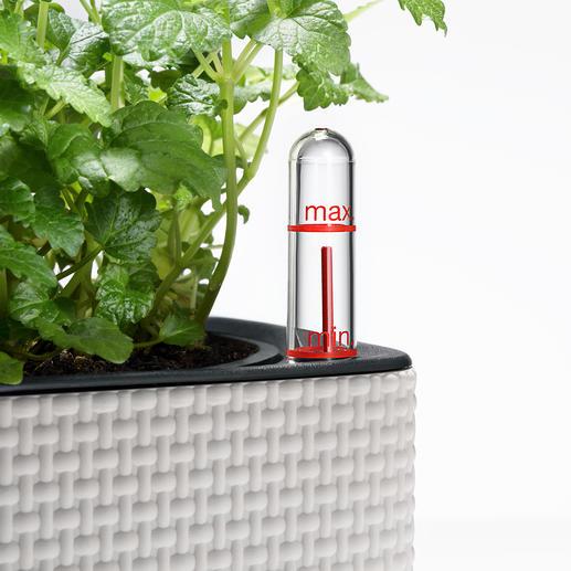 Der Kräuterwürfel ist mit einem integrierten Wasserstandsanzeiger ausgestattet.