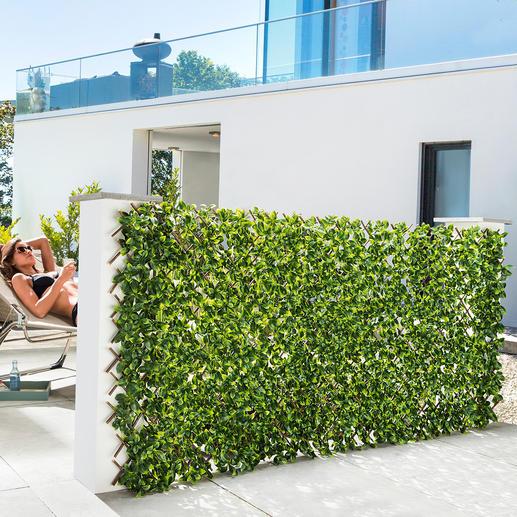 Flexible, immergrüne Pflanzenwand Nur auspacken, anbringen – schon fertig. Auf bis zu 1 x 2 m ausziehbar.