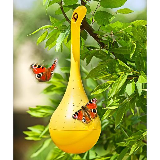 Schmetterlings-Oase Umschwärmter Treffpunkt: Ihre Schmetterlings-Oase im Garten, auf Ihrem Balkon.
