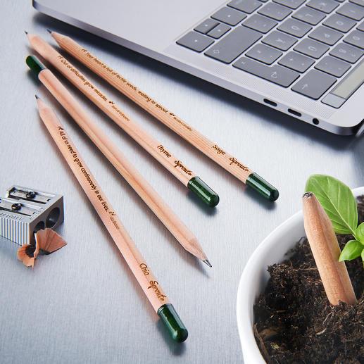 Nachhaltige Pflanzbleistifte, 5er-Set Der wohl erste pflanzbare Bleistift der Welt. Mit Kräuter- und Blumensamen. Nachhaltig, umweltschonend und schön.