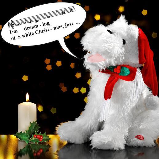 """Singender Weihnachtshund Der kleine Charmeur singt für Sie den Welthit """"White Christmas"""" – mit inbrünstiger Mimik und Gestik."""