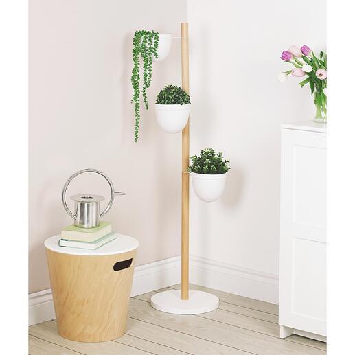 Pflanzenständer Ihr grünes Paradies auf kleinstem Raum. In Hochform: der vertikale Garten für zuhause.