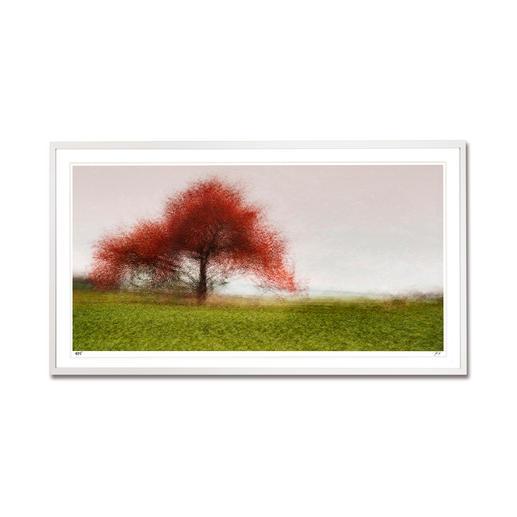 """Jacob Gils: """"Frederiksdal #6"""" - Impressionistisches Gemälde? Oder modernste Fotografie? Jacob Gils' Edition """"Frederiksdal #6"""" aus über 100 Einzelaufnahmen. Exklusiv bei Pro-Idee. 25 Exemplare."""