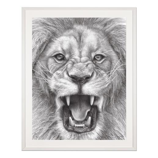 """Koshi Takagi: """"The Lion King"""" - Fotorealistische Bleistiftzeichnung. Mit über 1 Million handgemalten Strichen. Koshi Takagis zweite Edition seiner Raubkatzen-Serie. 90 Exemplare."""