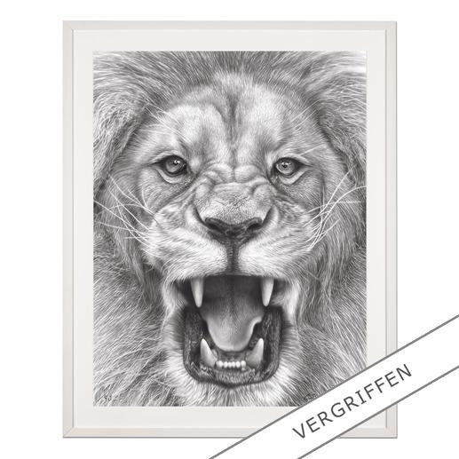 Koshi Takagi – The Lion King - Fotorealistische Bleistiftzeichnung. Mit über 1 Million handgemalten Strichen. Koshi Takagis zweite Edition seiner Raubkatzen-Serie. 90 Exemplare.