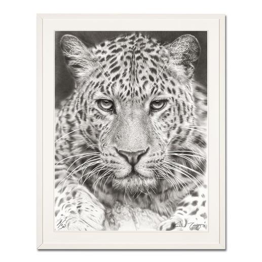 Koshi Takagi – Leo - Fotorealistische Bleistiftzeichnung. Mit über 1 Million handgemalten Strichen. Koshi Takagis dritte Edition seiner Raubkatzen-Serie. 30 Exemplare.