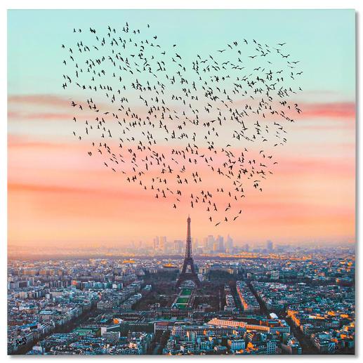 Robert Jahns – Paris Birds - Robert Jahns: Einer der populärsten Instagram-Stars. 30.000 Likes! Paris Birds – jetzt als Leinwand-Edition. Exklusiv bei Pro-Idee. Maße: 100 x 100 cm