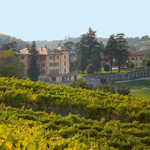 """Armason 2016, La Bollina, Piemont, Italien """"Einer der besten Weißweine Italiens. 96 Punkte."""" (Luca Maroni über den Jahrgang 2012, lucamaroni.com, 08.07.2013)."""