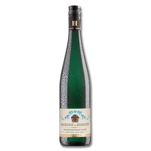 Wiltinger Riesling 2014, Reichsgraf von Kesselstatt, Morscheid, Mosel, Deutschland, Weißwein - Riesling von der Saar. Speziell veredelt.