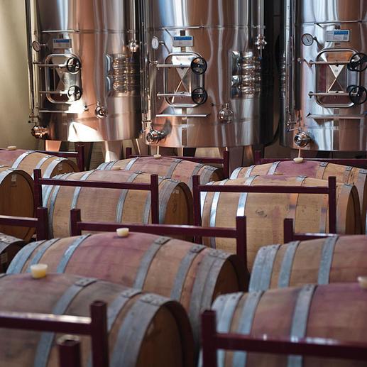 Weinkeller der Bodegas Barahonda