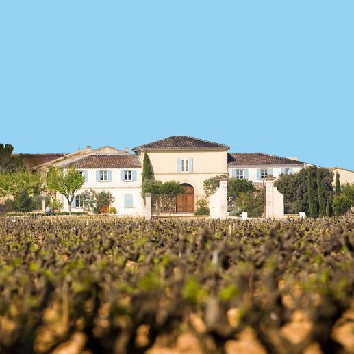 """Châteauneuf """"Les Sinards"""" 2013, Famille Perrin, Châteauneuf du Pape, Rhône, Frankreich In einigen Jahren wird der Wein von diesen Reben mehr als das Doppelte kosten."""