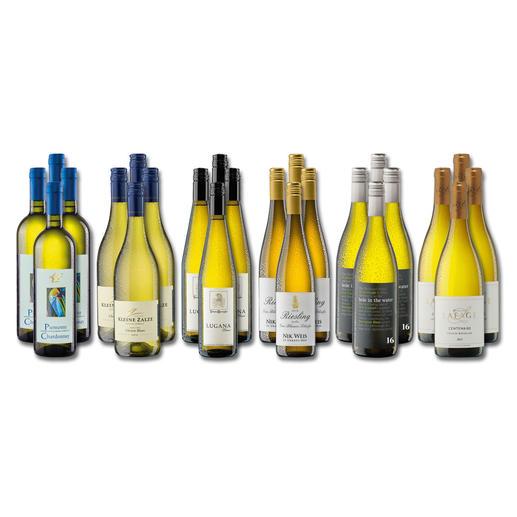 """Weinsammlung """"Die kleine Weißwein-Sammlung Frühjahr 2017"""", 24 Flaschen - Wenn Sie einen kleinen, gut gewählten Weinvorrat anlegen möchten, ist dies jetzt besonders leicht."""