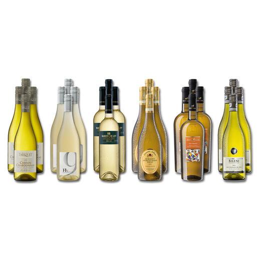 """Weinsammlung """"Die kleine Weißwein-Sammlung Frühjahr 2018"""", 24 Flaschen - Wenn Sie einen kleinen, gut gewählten Weinvorrat anlegen möchten, ist dies jetzt besonders leicht."""