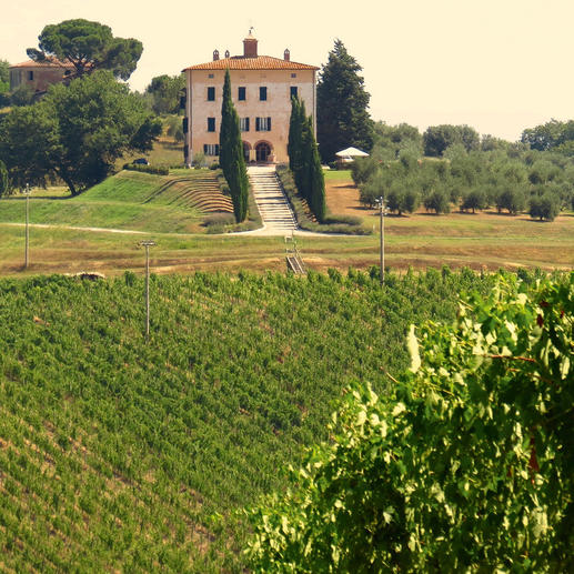 Vino Nobile di Montepulciano Riserva 2013, Fattoria del Cerro, Toskana, Italien Jahrgang 2012: Drei Gläser im Gambero Rosso 2017. Jahrgang 2013 noch besser?