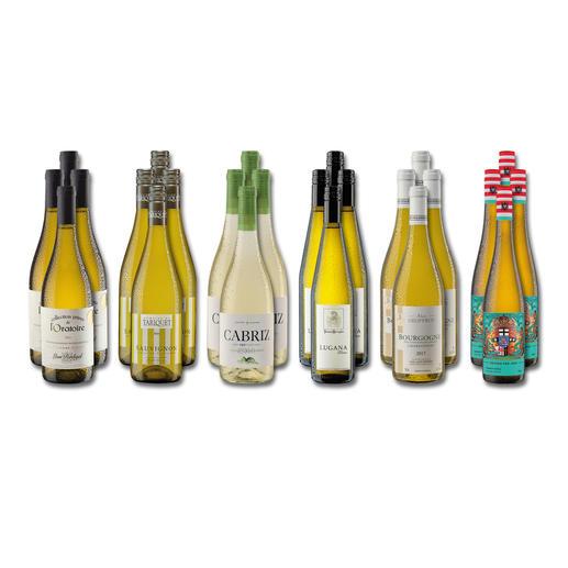 """Weinsammlung """"Die kleine Weißwein-Sammlung Herbst 2018"""", 24 Flaschen Wenn Sie einen kleinen, gut gewählten Weinvorrat anlegen möchten, ist dies jetzt besonders leicht."""