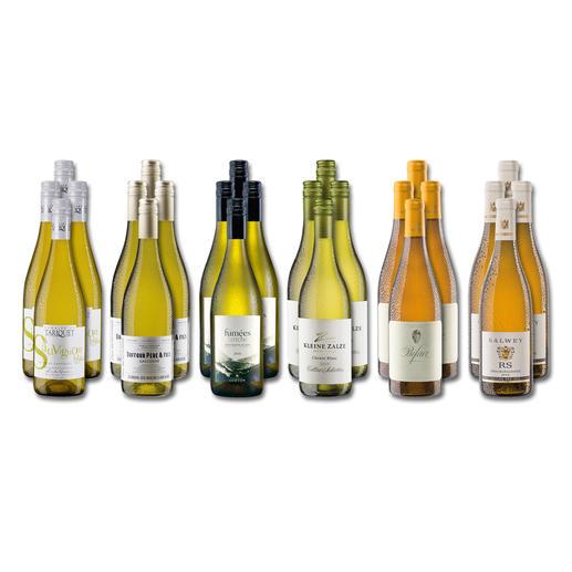 """Weinsammlung """"Die kleine Weißwein-Sammlung Sommer 2019"""", 24 Flaschen Wenn Sie einen kleinen, gut gewählten Weinvorrat anlegen möchten, ist dies jetzt besonders leicht."""