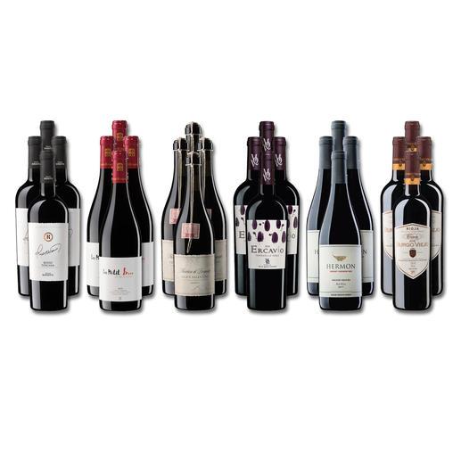 """Weinsammlung """"Die kleine Rotwein-Sammlung Frühjahr 2020"""", 24 Flaschen Wenn Sie einen kleinen, gut gewählten Weinvorrat anlegen möchten, ist dies jetzt besonders leicht."""