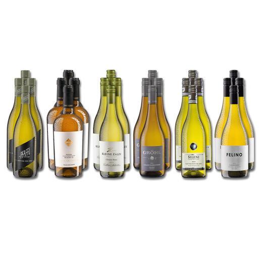 Weinsammlung - Die kleine Weißwein-Sammlung Frühjahr 2021, 24 Flaschen Wenn Sie einen kleinen, gut gewählten Weinvorrat anlegen möchten, ist dies jetzt besonders leicht.