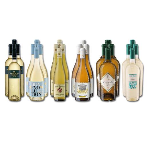 Weinsammlung - Die kleine Weißwein-Sammlung Sommer 2021, 24 Flaschen Wenn Sie einen kleinen, gut gewählten Weinvorrat anlegen möchten, ist dies jetzt besonders leicht.